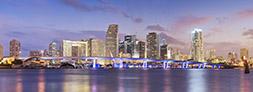 Miami Skyline - Small